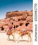 petra  jordan   april 25  2016  ... | Shutterstock . vector #1033481770
