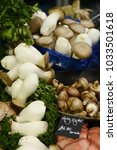 forest mushrooms on the market | Shutterstock . vector #1033501618