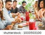 group of happy friends drinking ... | Shutterstock . vector #1033503100