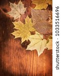 autumn background with leaves... | Shutterstock . vector #1033516696