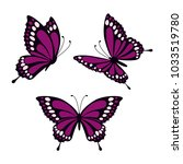 Stock vector set with three purple butterflies isolated on white background butterflies in direct angular and 1033519780