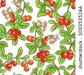 cranberry branch vector pattern | Shutterstock .eps vector #1033535266