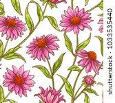 echinace purpurea vector pattern | Shutterstock .eps vector #1033535440