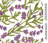 lavender plant vector pattern | Shutterstock .eps vector #1033535443