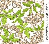 elderberry branch vector pattern | Shutterstock .eps vector #1033535446