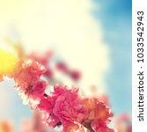 spring flowers. sakura | Shutterstock . vector #1033542943