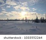 arctic winter landscape   Shutterstock . vector #1033552264
