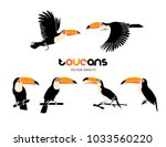 vector illustration. toucans ... | Shutterstock .eps vector #1033560220