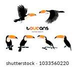 vector illustration. toucans ... | Shutterstock .eps vector #1033560220