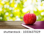 red apples put on book with... | Shutterstock . vector #1033637029