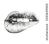 sexy lips in engraving style on ... | Shutterstock .eps vector #1033639003