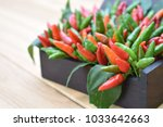chili bird's eye chilli... | Shutterstock . vector #1033642663