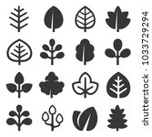 leaf icons set on white... | Shutterstock . vector #1033729294