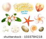 set of tropical nature objects  ... | Shutterstock . vector #1033784218