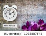 daylight savings time spring... | Shutterstock . vector #1033807546