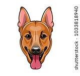 german shepherd dog face.... | Shutterstock .eps vector #1033818940