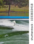 white heron in a city park on a ...   Shutterstock . vector #1033833418