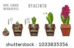 botanical set home garden...   Shutterstock .eps vector #1033835356