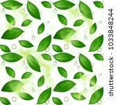 green young tea leaves on a... | Shutterstock .eps vector #1033848244