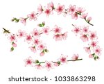spring bloom branches with pink ... | Shutterstock .eps vector #1033863298
