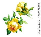 Set Of Two Yellow Roses...