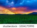 A beautiful vibrant cloudy sky of an Idaho country sunset with all its vivid colors over a lush green field of fresh alfalfa.