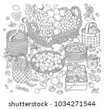 a lot of fruits and berries in... | Shutterstock .eps vector #1034271544