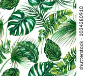tropical palm leaves  monstera  ... | Shutterstock .eps vector #1034280910