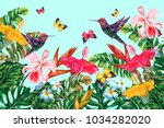 tropical flowers  hummingbirds  ... | Shutterstock .eps vector #1034282020