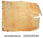 Birch Bark Isolated On A White...