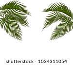 different in form tropical dark ...   Shutterstock .eps vector #1034311054