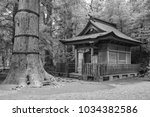 a black and white infrared... | Shutterstock . vector #1034382586