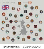 dogs by country of origin.... | Shutterstock .eps vector #1034430640