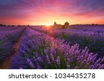 lavender field at sunset in... | Shutterstock . vector #1034435278