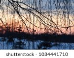 tree branches at sunset time. | Shutterstock . vector #1034441710