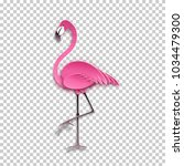 pink flamingo standing on one... | Shutterstock .eps vector #1034479300