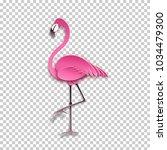 pink flamingo standing on one...   Shutterstock .eps vector #1034479300