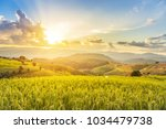 landscape view of green... | Shutterstock . vector #1034479738