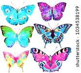 beautiful color butterflies set ... | Shutterstock . vector #1034538199