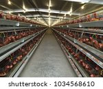 multilevel production line... | Shutterstock . vector #1034568610