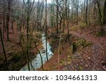 creek in the wooded forest... | Shutterstock . vector #1034661313