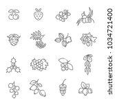 berries icon set | Shutterstock .eps vector #1034721400