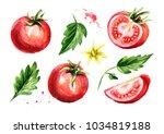 rip tomatoes set. watercolor... | Shutterstock . vector #1034819188