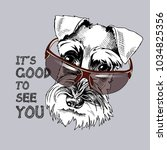 schnauzer in a dark sunglasses. ... | Shutterstock .eps vector #1034825356