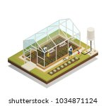 greenhouse cable supported...   Shutterstock .eps vector #1034871124