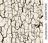 vector seamless pattern of bark ... | Shutterstock .eps vector #1034874454