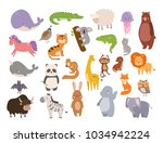 cute zoo cartoon animals... | Shutterstock .eps vector #1034942224