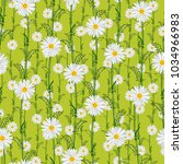seamless pattern from field... | Shutterstock .eps vector #1034966983