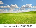 lawn with green grass  lush... | Shutterstock . vector #103498853