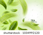 tea leaves background. green... | Shutterstock .eps vector #1034992120